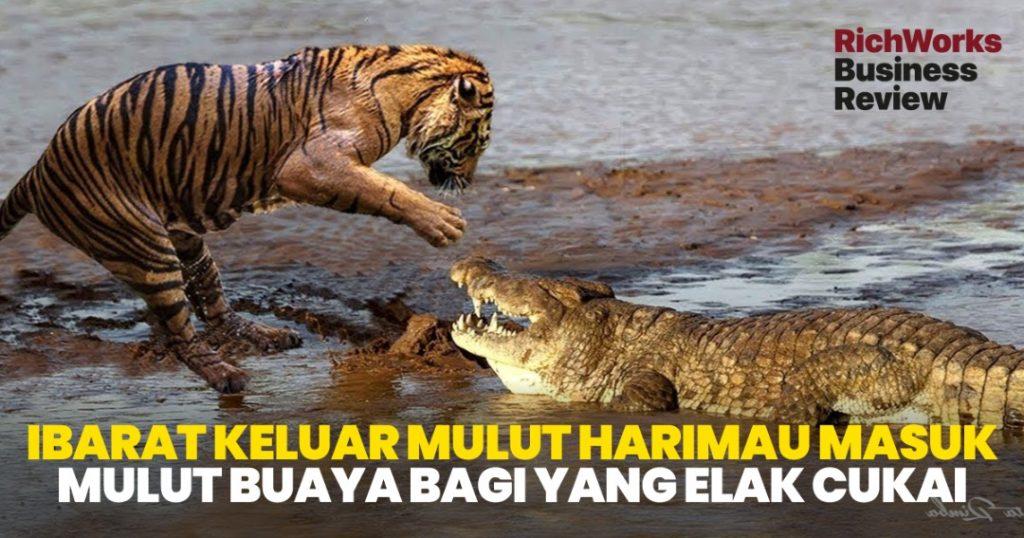 Lari Cukai : Ibarat Keluar Mulut Harimau Masuk Mulut Buaya